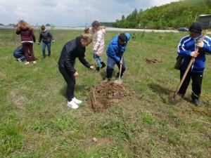Експерти от РИОСВ – Монтана засадиха фиданки по повод Деня на Земята - 22 април