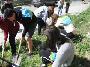 РИОСВ – Монтана отбеляза Деня на Земята с разнообразни инициативи