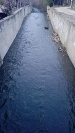 """РИОСВ – Монтана и РЛ – Монтана към ИАОС извършиха проверка по  Сигнал за замърсяване на водите  на река в кв. """"Мала Кутловица"""", гр. Монтана в условията на извънредно положение"""